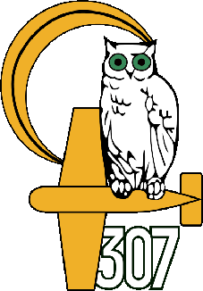 No. 307 Polish Night Fighter Squadron Lwow Eagle-Owls